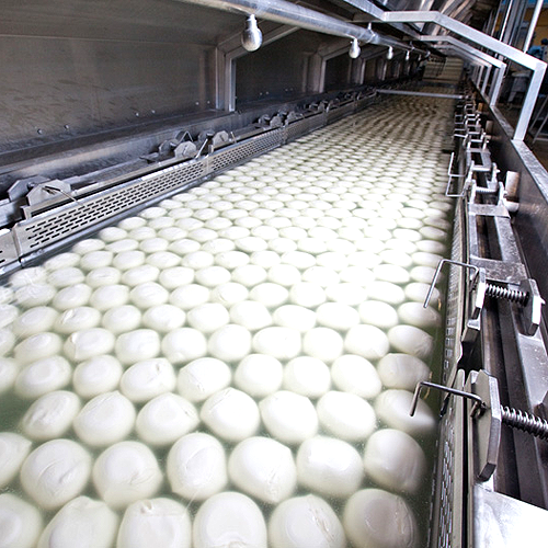 Photo: Milk processing cost savings
